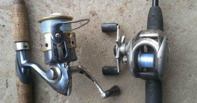 Baitcasting Reel or Spinning Reel