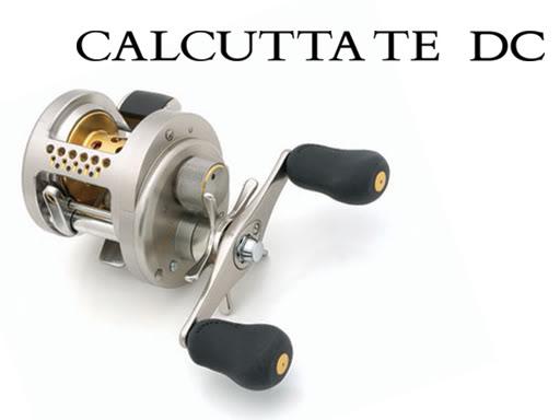 Shimano Calcutta TE DC Reel
